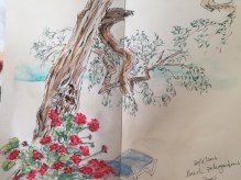Olive tree on the beach - from my Sketchbook