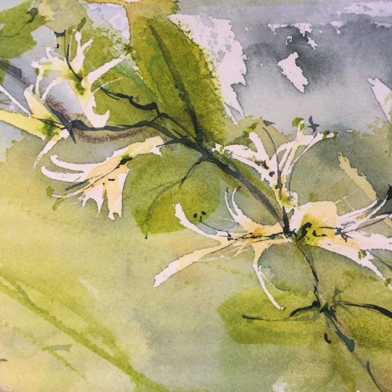A blogging renaissance - Spring. An excerpt from a watercolour by Vandy Massey