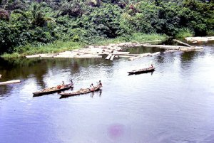 Fishermen in the Niger Delta