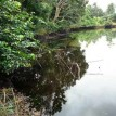 Oil spill: Itsekiri communities kick over alleged exclusion from affected areas
