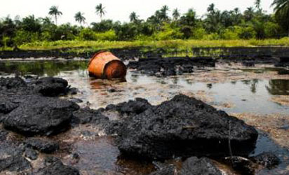 File photo: Damaged ecosystem from oil spill