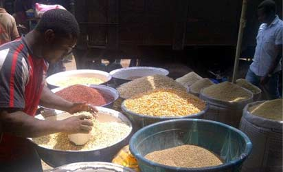 APC Governors pledge commitment to Food Security