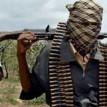 Gunmen kidnap 21 travellers along Kaduna-Kachia Road