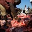 Bauchi Butchers Association bans slaughtering of animals outside abattoir