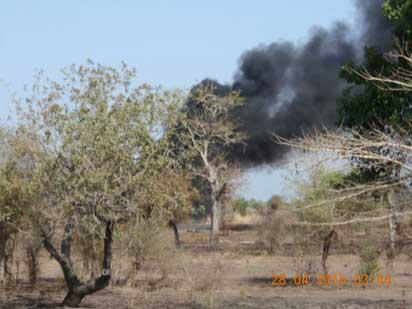 File: Sambisa Forest