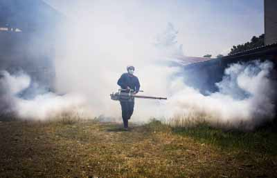 Fumigation is a basic way to fight the disease. Image credit: Shutterstock