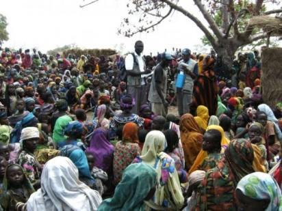 File: IDPs in Dikwa