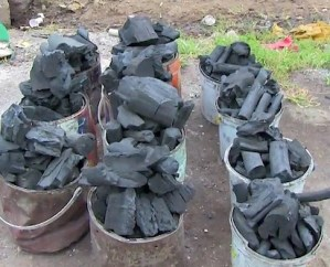 Niger Govt. seizes 33 trucks loaded with Charcoal in Minna