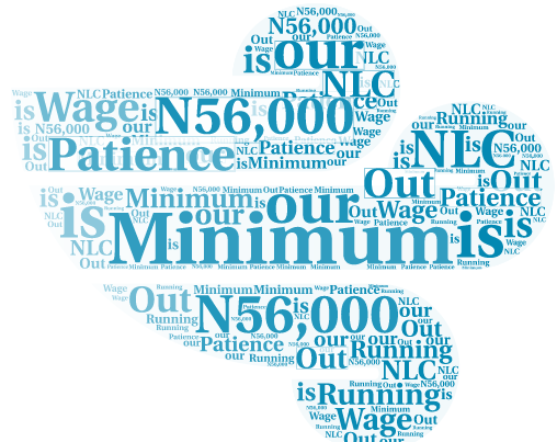 Minimum wage: Transfer to concurrent list won't work — FG