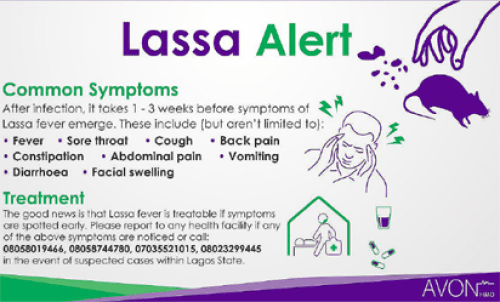 Lassa fever: Minister directs health experts to embark on awareness campaigns
