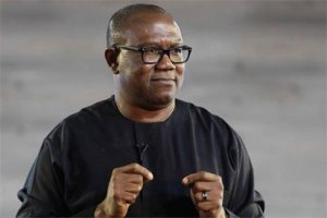 Nigerian politicians fighting over collapsed structure – Peter Obi