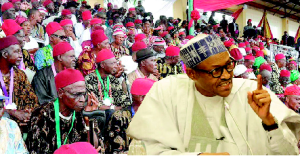 Igbo elders & Buhari