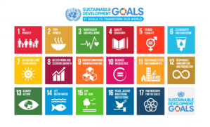 Let SDGs underpin COVID-19 economic recovery plans — Olawuyi