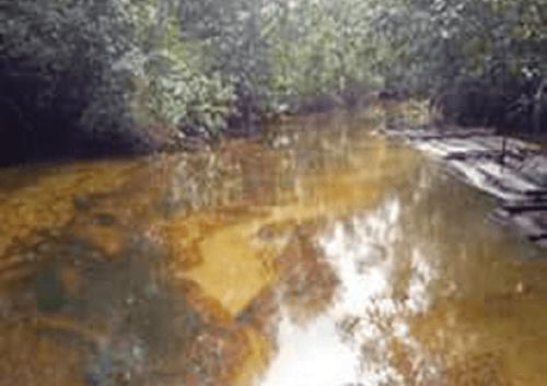 Norwegian Ambassador expresses concern over slow space of Ogoniland clean up