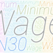 National minimum wage: Need to move from exclusive to concurrent legislative list (1)