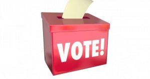 Kogi, vote