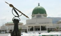 Only NASS has power to review constitution, says N/Delta group