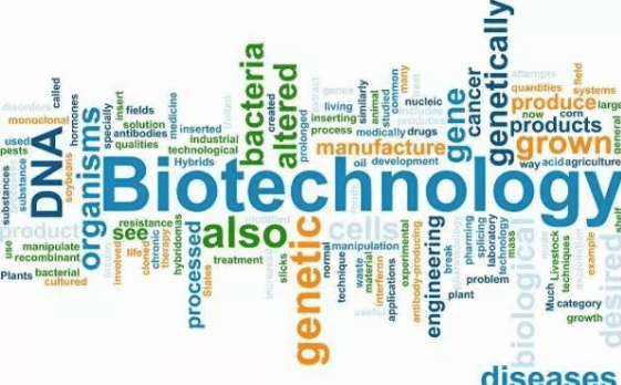 vanguardngr.com - adekunle - Breaking: FG to develop National Biotechnology Communication policy