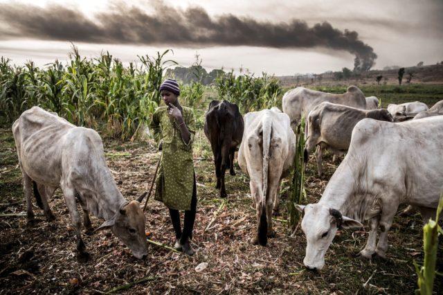 Women protest against herdsmen invasion of farmlands in Bayelsa
