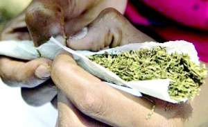 23-year-old man docked for allegedly possession of Indian hemp