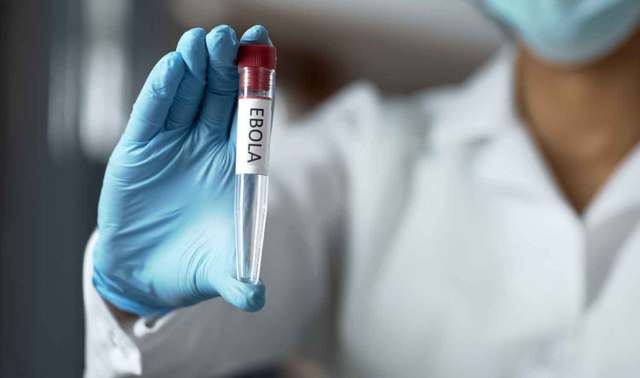 7 people infected with Ebola in Guinea – WHO