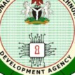 Why we're engaging in economic diversification – NITDA boss