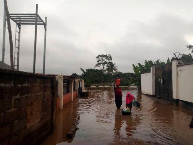 NIGERIA: Plant trees for erosion control — expert