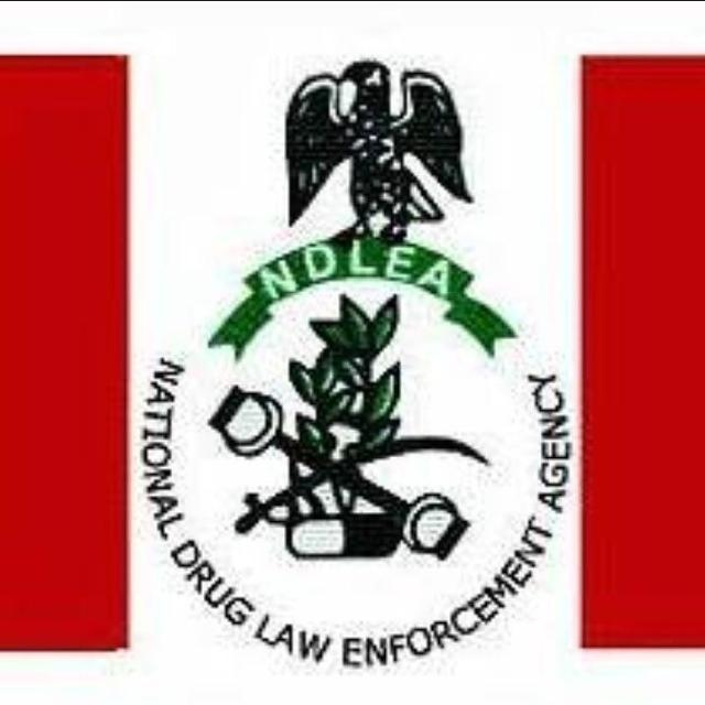 NDLEA destroys 34, 560.9438 kilograms of drugs, substances in Ogun