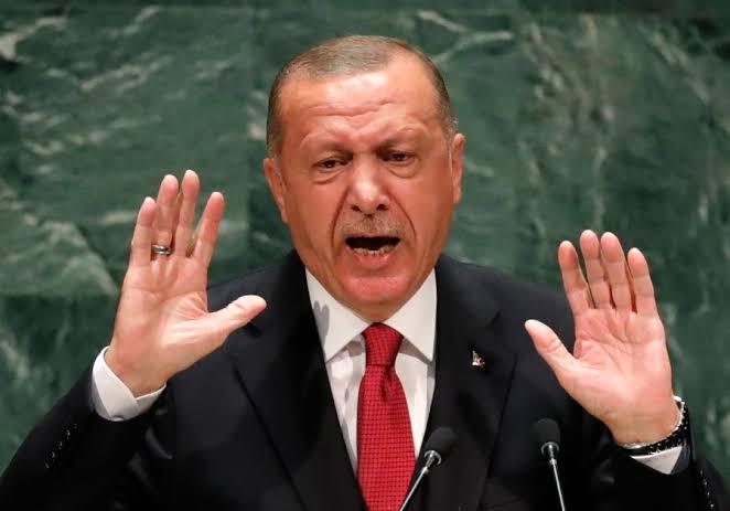 Israel/Palestine tension: Don't drag Nigeria into your mess — Fani-Kayode tells Erdogan