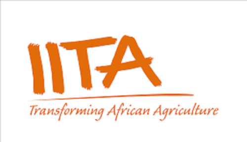 UN declares 2020 as international year of plant health – IITA