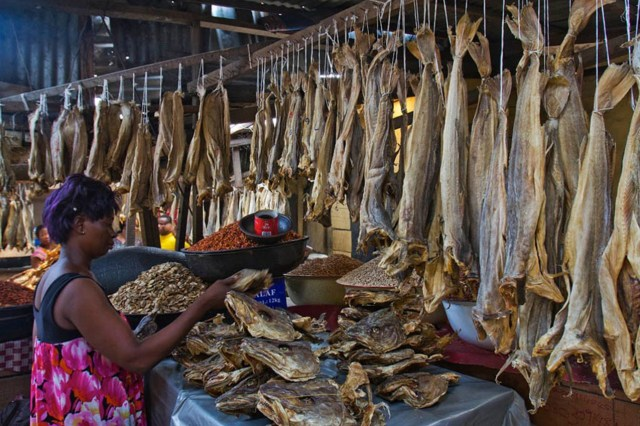 Stock-fish dealers seek access to Forex