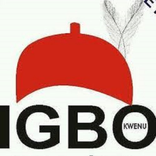 Combination of 45 political parties demand for Igbo President