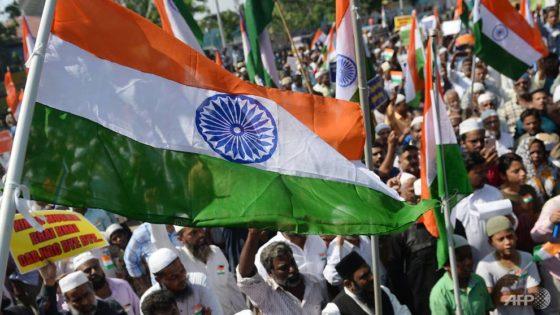 Картинки по запросу india muslims flags constitution