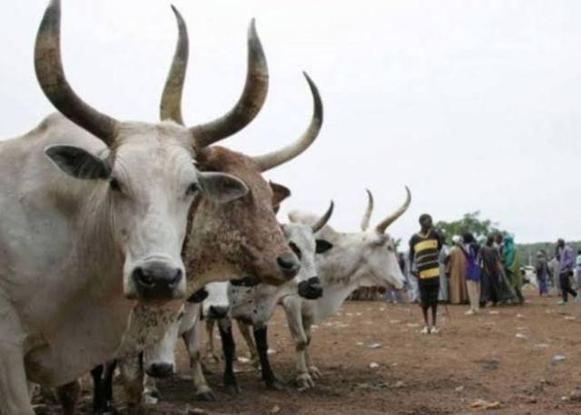 Anti-open grazing law, Fulani herders, Oyo State