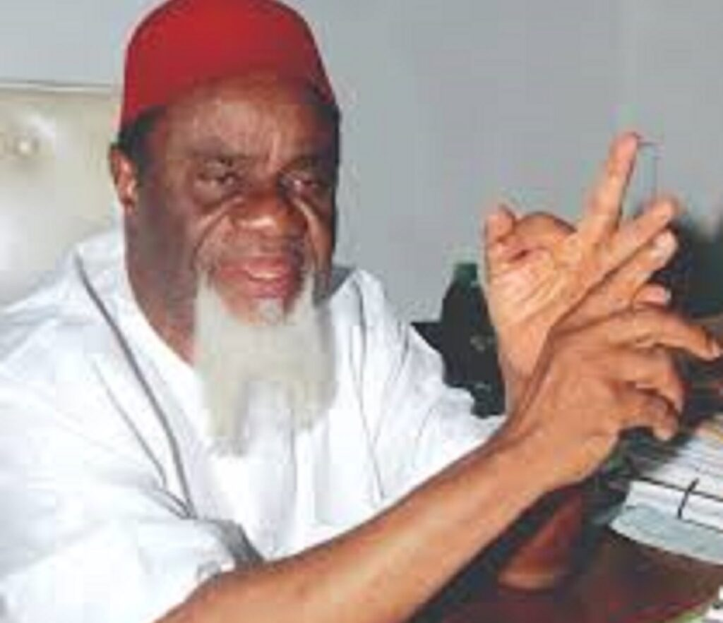 Igbo already projecting for actualisation of Igbo presidency in 2023 — Ezeife