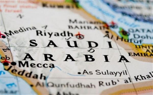 Saudi Arabia wades in on French cartoon debate as row escalates