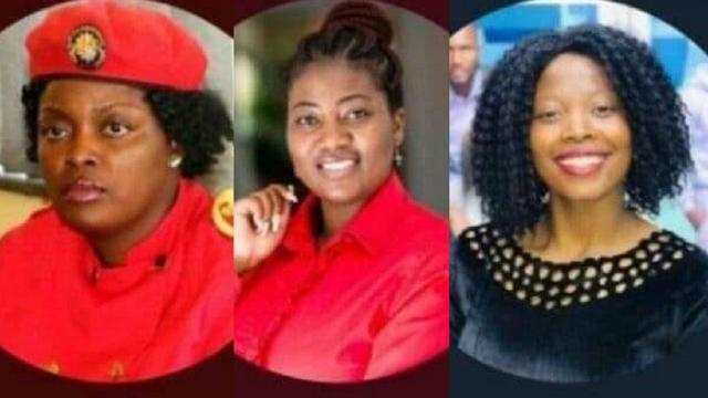 Outrage over abducted and assaulted Zimbabwean female opposition politicians