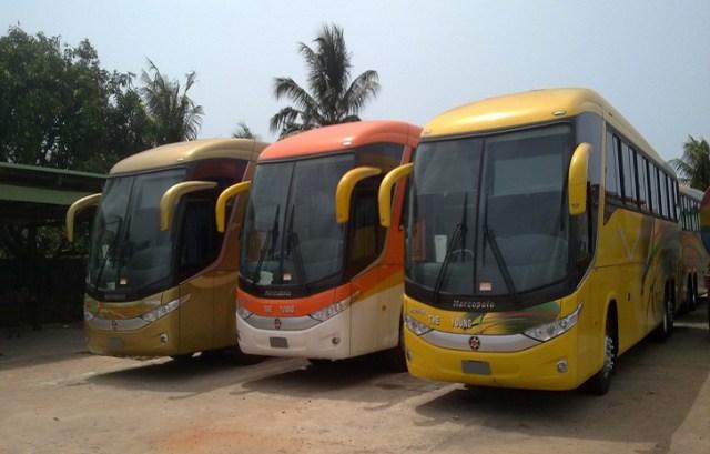Luxury bus