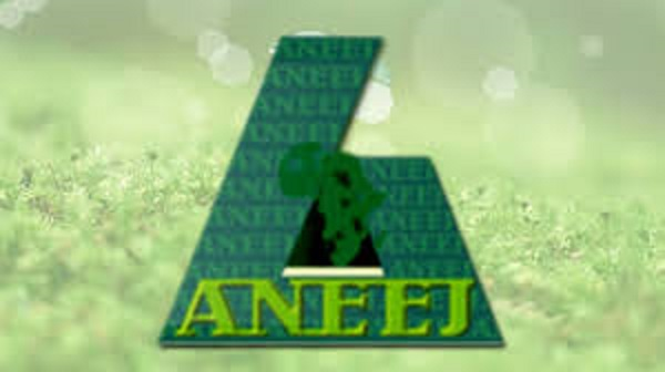 ANEEJ releases performance ranking report of 113 MDAs in 2020