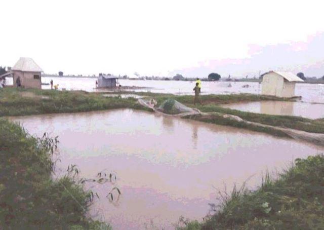 Mother, 4 children killed in Abuja flood