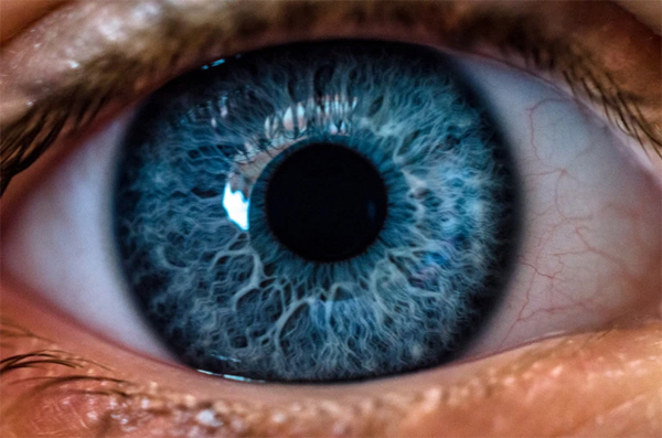 World Sight Day: 75% of visual problems avoidable, says Optometrist Association