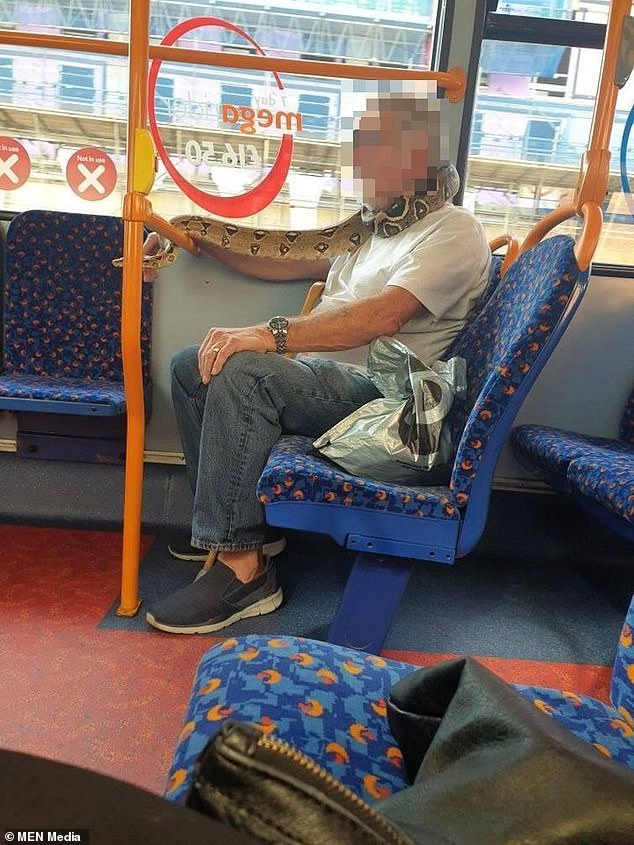 Man in commercial bus spotted wearing SNAKE instead of face mask