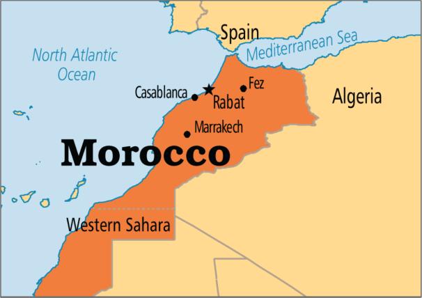Morocco raises alarm on growing Islamic State presence in Sahel region
