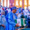 Economist, others hail 2021 budget proposal as budget of hope