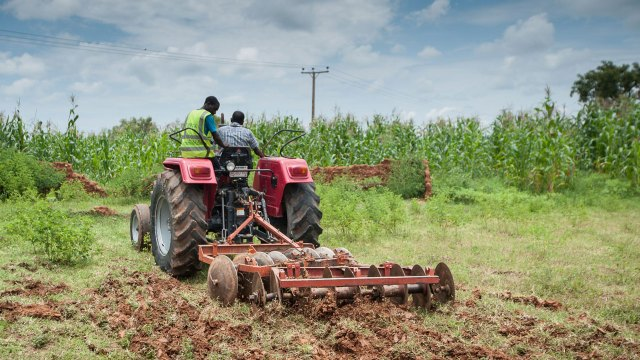 AFEX's committed to boosting smallholder farmers' income-earning capacity — Balogun