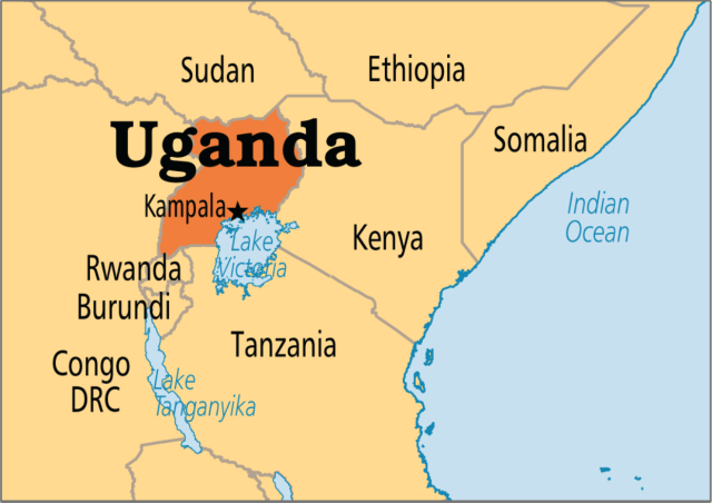 16 killed as riots rock Uganda over politician's arrest