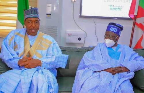 Boko Haram: Tinubu visits Zulum, wants military to change strategy