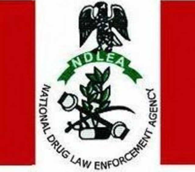 Court okays NDLEA's request to destroy drugs worth N150m