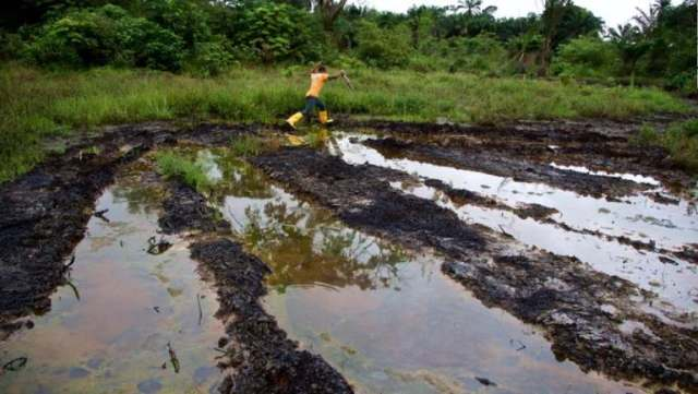 3 months after crude oil spill causing environmental pollution: Bayelsa communities cry out over loss of livelihood