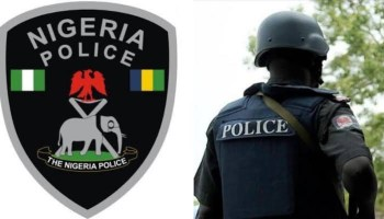 2 in police net over alleged possession of stolen vehicle - Vanguard News